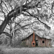 Southern Past Ll Art Print