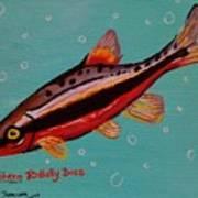 Southern Redbelly Dace Art Print