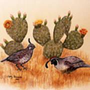 Southwest Art Gambels Quail Art Print