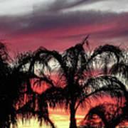 Southwest Sunset Art Print