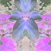 Space Lily Art Print by Roxy Riou