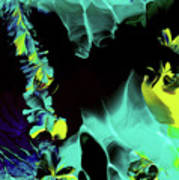 Space Vines Art Print