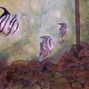 Spadefish In Fl Art Print