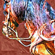 Spanish Horse Art Print