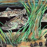 Specks In The Grass Art Print by Robert Wolverton Jr