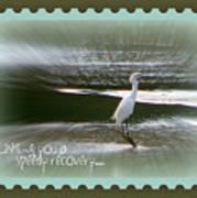 Speedy Recovery Greeting Card Art Print