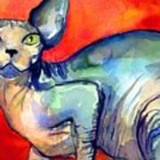 Sphynx Cat 6 Painting Art Print