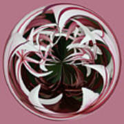 Spider Lily Orb Art Print