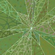Spider Silk Art Print