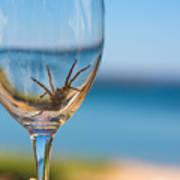 Spider Wine Art Print