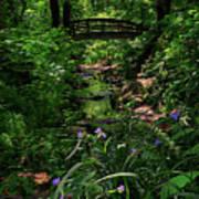 Spirit Bridge 2 Art Print