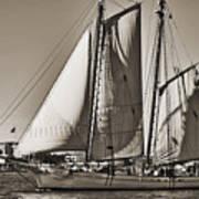 Spirit Of South Carolina Schooner Sailboat Sepia Toned Art Print by Dustin K Ryan