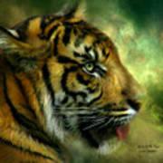 Spirit Of The Tiger Art Print