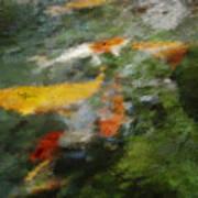 Splash Of Koi Art Print