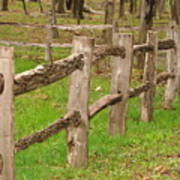 Split Rail Fence Art Print