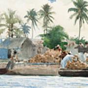 Sponge Fisherman In The Bahama Art Print by Winslow Homer