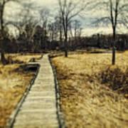 Spooky Hike On The Appalachian Trail Art Print