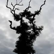 Spooky Tree Art Print