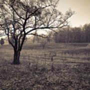 Spotsylvania Battlefield Art Print