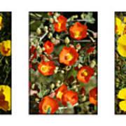 Spring - Desert Style 2 Art Print