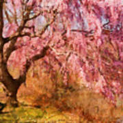 Spring - Sakura - A Beautiful Spring Day  Art Print by Mike Savad
