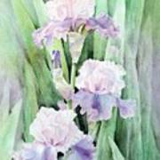 Spring Abounds Art Print by Bobbi Price