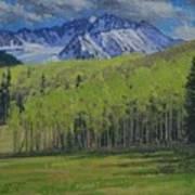 Spring Aspen Art Print
