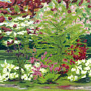 Spring At Osage Land Trust II Art Print