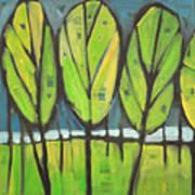 Spring At The Lake Art Print