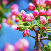 Spring Awakening 2 - Paint Art Print