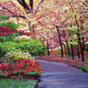 Spring Blossoms Impressions Art Print