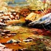 Spring Creek Glow Art Print