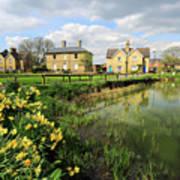 Spring Daffodils, Ramsey Village Pond, Cambridgeshire, England Art Print