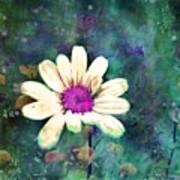 Spring Daydreams Art Print
