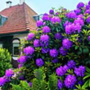 Spring  Dutch Garden  Art Print