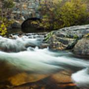 Spring Flow At Eagle Creek Art Print