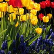 Spring Flowers Square Art Print