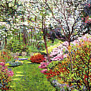 Spring Forest Vision Art Print by David Lloyd Glover