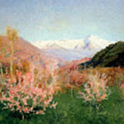Spring In Italy Art Print