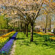 Spring In Keukenhof, Netherlands Art Print