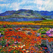 Spring In Namaqualand Art Print