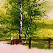 Spring In The Paddock Art Print