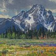 Spring In Wyoming Art Print