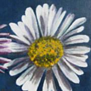 Spring Is In The Air II Art Print