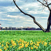 Spring Jog On The Potomac Art Print