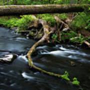 Spring Morning At Crum Elbow Creek I Art Print