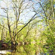 Spring On A Pennsylvania Stream, Fairmount Park, Philadelphia Art Print