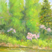 Spring On Gore Creek Art Print
