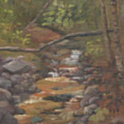 Spring on the Gale River Art Print