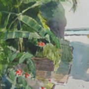 Spring Palms Art Print